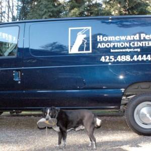 Homeward Pets van