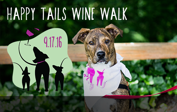 Join Us for a Dog Walk Like No Other!