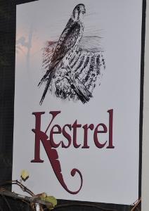 kestrel1 (212x300)